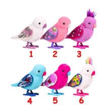 Tenyérnyi barátok: Papagáj, többféle