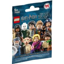 LEGO® Harry Potter és a Legendás Lények 71022 Minifigura