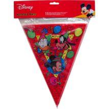 Mickey Egeres Parti Zászló