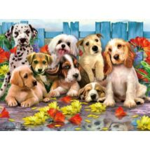 3D Puzzle Kids: Kutyák