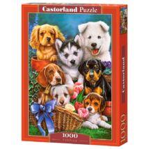 Castorland 1000 db-os Puzzle - Kölyökkutyák