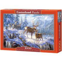 Castorland 1000 db-os Puzzle - Téli Hegyi Fény