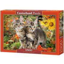 Castorland 1500 db-os Puzzle - Cica Barátok