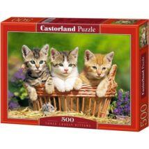 Castorland 500 db-os Puzzle - Három Szeretnivaló Kiscica