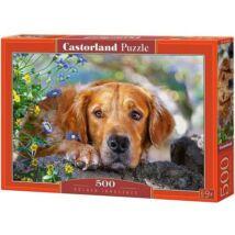 Castorland 500 db-os Puzzle - Golden Retriver