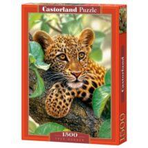 Castorland 1500 db-os Puzzle - Fa Ölelése