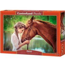 Castorland 500 db-os Puzzle - Nagyszerű Barátság