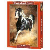Castorland 1000 db-os Puzzle - Töretlen Szellem