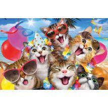Selfies 3D Puzzle: Macskák 48 db