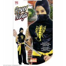 Power Ninja Jelmez