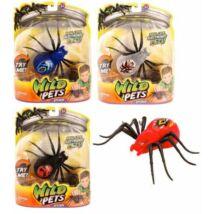 Wild pets: élethű elektronikus állatkák - pókok, több színben